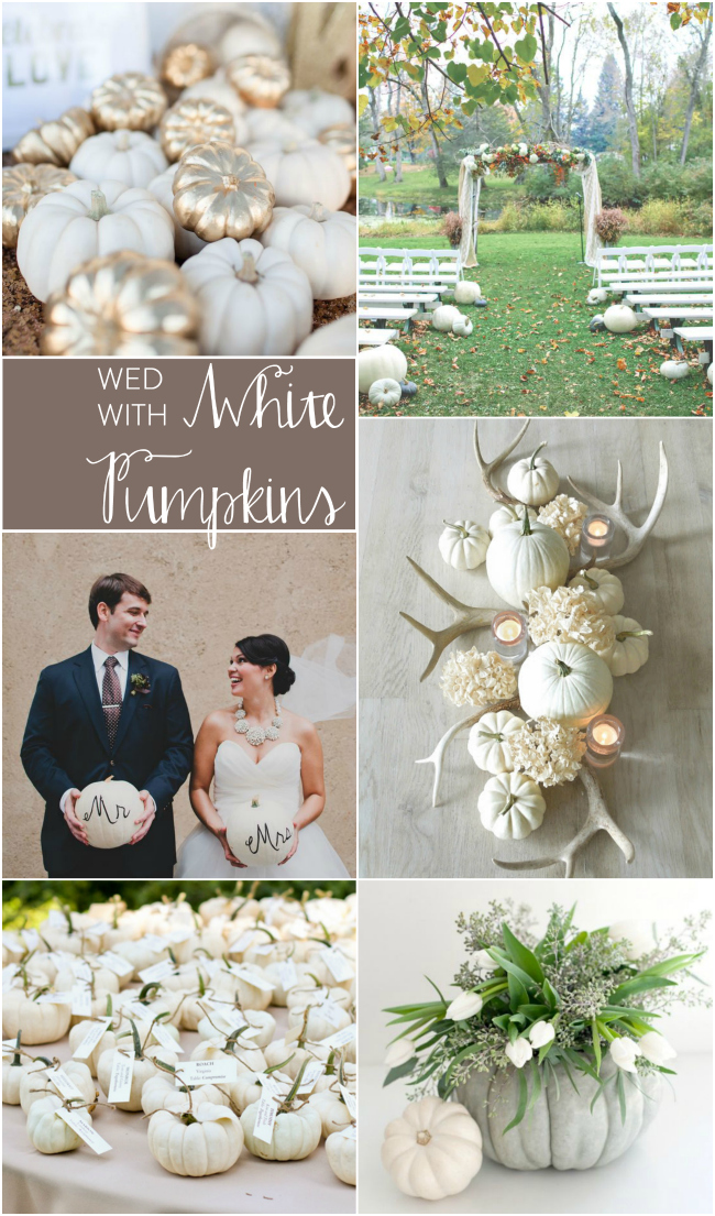 CWe love white pumpkins at weddings! Bespoke Decor